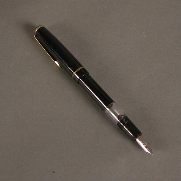 Fountain pen. Stella....